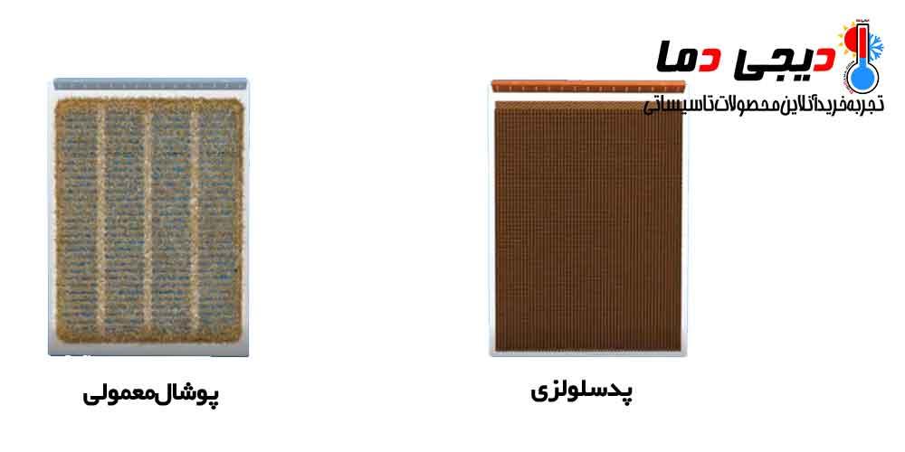 تفاوت-پد-سلولزی-و-پوشال